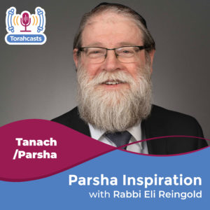 Parsha Inspiration