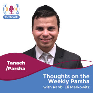 Thoughts on the Weekly Parsha
