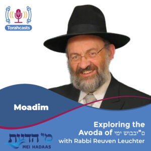 "Exploring the Avoda of ימי שובבי""ם"